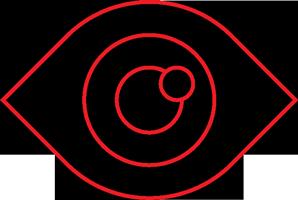 icon eye